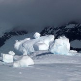 Antarctique2006-010