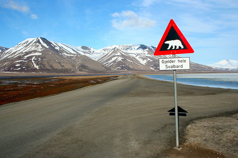 Polar bear sign Svalbard w